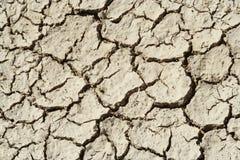 Seque las grietas del fango Imagen de archivo libre de regalías