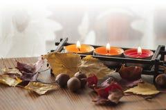 Seque las hojas de otoño y las bellotas coloridas del roble rojo septentrional en el tablero de madera con tres velas ardientes Imagen de archivo