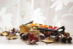 Seque las hojas de otoño y las bellotas coloridas del roble rojo septentrional en el tablero de madera con tres velas ardientes Imagen de archivo libre de regalías