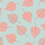 Seque o teste padrão das folhas Fotografia de Stock