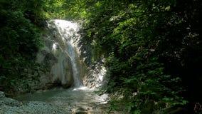Seque a paisagem bonita da natureza de Forest Fall Foliage Mountains das cachoeiras das quedas a água do lago do rio video estoque