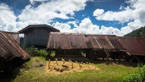 Sequedad cosechada del arroz en el Sun cerca de las estructuras rústicas - Maligcong, Filipinas Fotografía de archivo