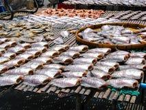 Sequedad de los pescados en la tabla de bambú, Tailandia Fotos de archivo libres de regalías