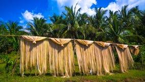 Sequedad del cáñamo de Manila en poste de bambú Fotos de archivo libres de regalías