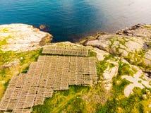 Sequedad del estocafís del bacalao en los estantes, islas Noruega de Lofoten fotografía de archivo