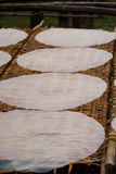 Sequedad recién hecha del papel de arroz en el delta del Mekong Fotos de archivo libres de regalías