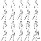 Sequence of creation a beautiful female contour Royalty Free Stock Photography