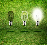 Sequence of Creative idea,three bulb in grass room,eco idea Stock Images