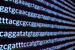 Sequence DNA. Stock Image