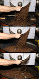 Sequence falling coffee. Sequence of the sequence fall into a coffee roaster in Canada Stock Photo