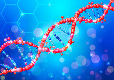Sequence shiny of a DNA molecule. Royalty Free Stock Photo