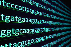 Sequencing the gene. Stock Images