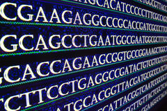 Sequencing of the genome in the laboratory. stock photography
