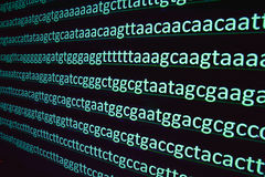 Sequencing of the genome. Stock Images