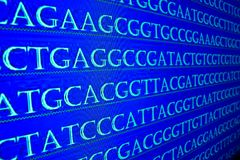 Sequencing the genome. Sequence of nucleotide bases in DNA royalty free stock photos