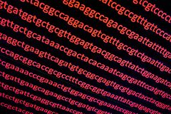 Sequencing the genome. Background on the subject of DNA sequencing, symbols of nucleotide bases on the dark Royalty Free Stock Photos