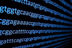 Sequencing the genome. Background on the subject of DNA sequencing, symbols of nucleotide bases on the dark royalty free stock image