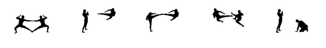 Sequenza 2 di combattimento di Kung Fu Fotografia Stock Libera da Diritti