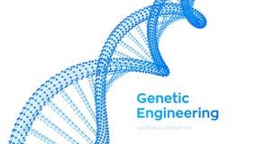 Sequenza del DNA Maglia della struttura delle molecole del DNA di Wireframe Modello editabile di codice del DNA Concetto di scien illustrazione di stock