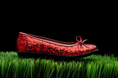 Sequined red slipper on grass Stock Photos