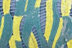 2 Sequins цвета ярких Стоковое Фото
