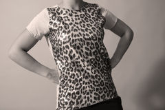 Sequins shirt Royalty Free Stock Images