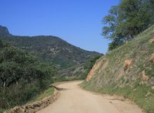 Sequoia Dirt Road Stock Photography
