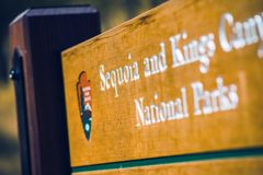 Sequoia and King Canyon Royalty Free Stock Photos