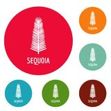 Sequoia leaf icons circle set vector. Isolated on white background Stock Photography