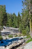 Sequoia National Forest, California, USA Stock Photography