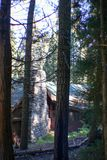 Sequoia National Forest Park stock photography