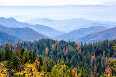 Sequoia National Park mountain landscape at autumn Royalty Free Stock Photography