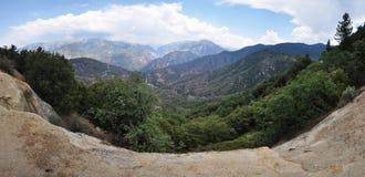 Sequoia Stock Images