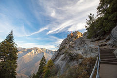 Sequoia National Park Stock Image