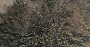 Sequoia Nationale Park Zonsopgang Zonsondergang Luchthommel 4K Nov. 2017 stock videobeelden