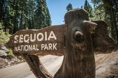 Sequoia sign Royalty Free Stock Image