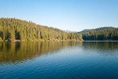 Sequoia Trees and Lake. Landscape stock photos