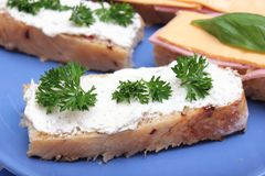 ser chlebowy Obraz Stock