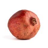 ser den naturliga en pomegranaten Royaltyfri Bild