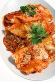 ser enchiladas sosu salsa Zdjęcie Royalty Free