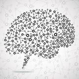 Ser humano abstrato do cérebro Fotos de Stock