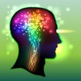 Ser humano Brain Color dos neurônios ilustração stock