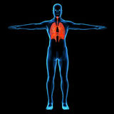 Ser humano con respiratorio visible Fotos de archivo