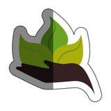 ser humano de la mano con el icono aislado planta de las hojas Imágenes de archivo libres de regalías