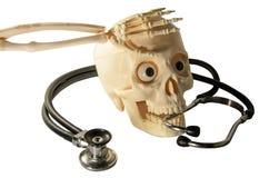Ser humano esquelético del estetoscopio de los huesos de brazo del cráneo fotos de archivo