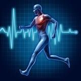 Ser humano que funciona o símbolo médico da saúde cardiovascular ilustração do vetor