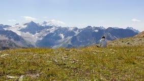 Ser humano solo en montañas Imágenes de archivo libres de regalías