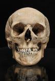 Ser humano verdadero del cráneo en un fondo negro Foto de archivo libre de regalías