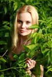 Ser oss som är blonda i skogen Arkivfoto
