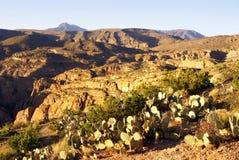 Sera al canyon dell'insenatura dei pesci in Arizona Immagine Stock Libera da Diritti